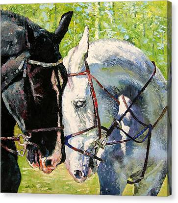 Bridled Love Canvas Print by John Lautermilch