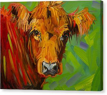 Bright And Beautiful Cow Canvas Print