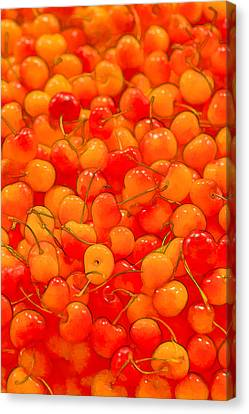 Bright And Orange Canvas Print by Scott Campbell