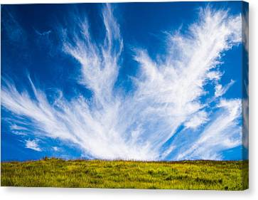 Bright Green Meadow And Deep Blue Sky Canvas Print by Matthias Hauser