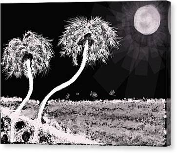 Bright Night In The Tropics Canvas Print by Renee Michelle Wenker