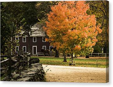 Canvas Print featuring the photograph Bright Orange Autumn by Jeff Folger