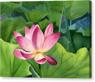 Bright Pink Lotus Blossom Canvas Print by Sharon Freeman