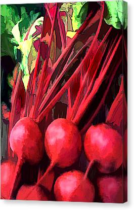 Bright Red Beets Canvas Print by Elaine Plesser