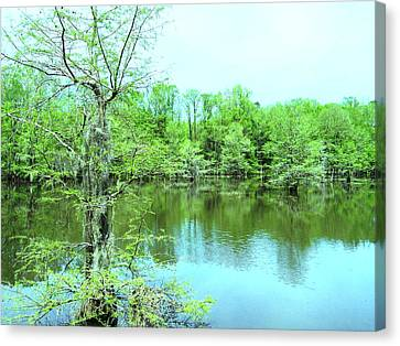 Bright Green Mill Pond Reflections Canvas Print by Belinda Lee