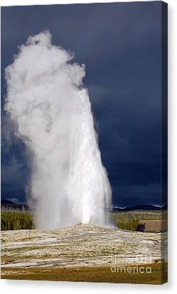 Bright Steam Plume Set Against A Darkening Sky From Old Faithful Geyser In Yellowstone National Park Canvas Print by Shawn O'Brien