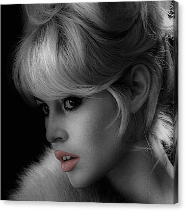 Brigitte Bardot Canvas Print by Andrew Fare