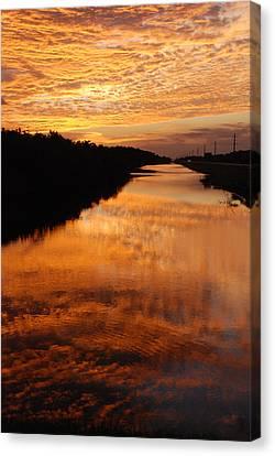 Brilliant Reflection Canvas Print