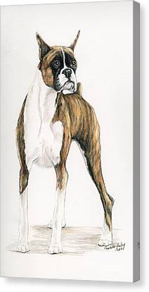 Brindle Boxer Canvas Print by Charlotte Yealey