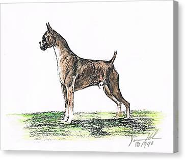 Brindle Boxer Canvas Print by Joann Renner