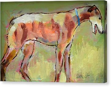 Brindle Greyhound Canvas Print by Carol Jo Smidt