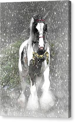 Bringing Home The Christmas Tree Canvas Print by Fran J Scott