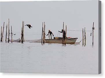 Bringing In The Catch 2 Canvas Print by Leah Palmer