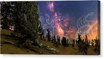 Bristlecone Forest And The Milky Way Canvas Print by Babak Tafreshi