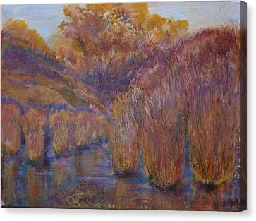 Bristling Rushes Canvas Print by Helen Campbell