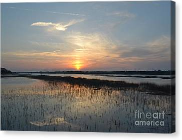 Canvas Print featuring the photograph Broad Creek Sunset II by Carol  Bradley