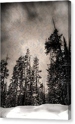 Brocade Sky Canvas Print by Juli Ellen