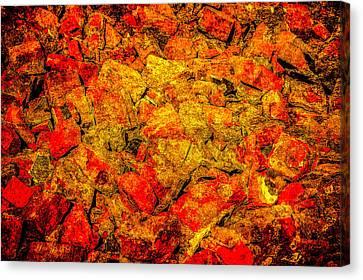 Broken Bricks Canvas Print by Alexander Senin