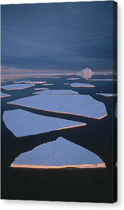 Broken Fast Ice Under Midnight Sun East Canvas Print by Tui De Roy