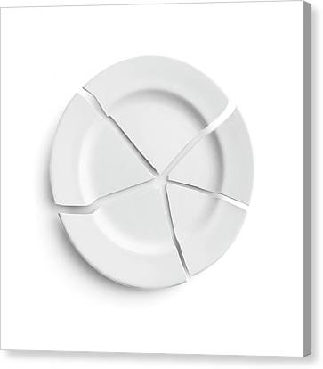 Broken Plate Canvas Print by Science Photo Library