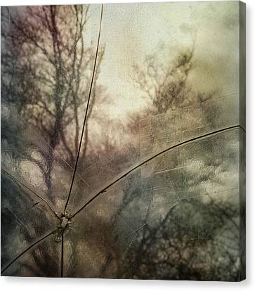 Canvas Print featuring the photograph Broken Sky by Sally Banfill