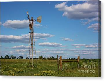 Broken Windmill In A Pasture Canvas Print by Robert D  Brozek