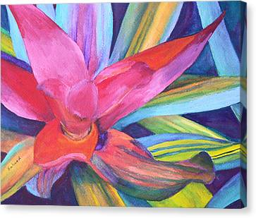 Canvas Print featuring the painting Bromeliad Pink by Margaret Saheed