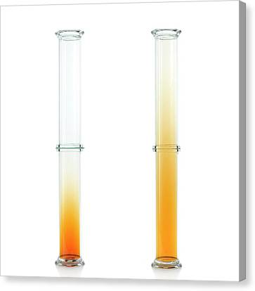 Bromine Diffusion Experiment Canvas Print by Science Photo Library