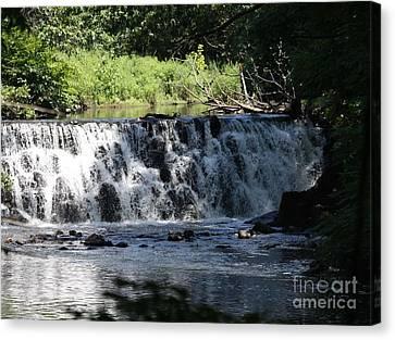 Bronx River Waterfall Canvas Print by John Telfer