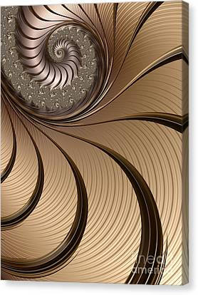 Bronze Spiral Canvas Print by John Edwards