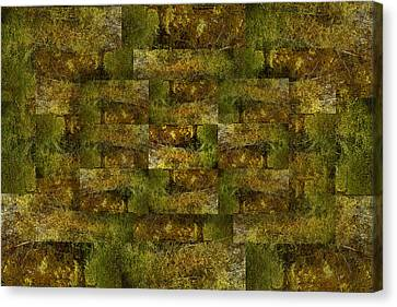 Canvas Print featuring the digital art Bronze Weave by Tom Romeo
