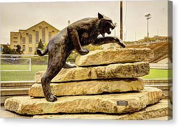 Kansas State Bronze Wildcat Canvas Print