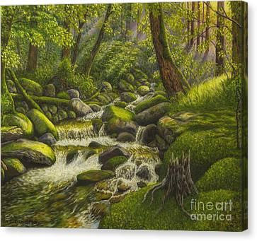 Brook In The Forest Canvas Print by Veikko Suikkanen