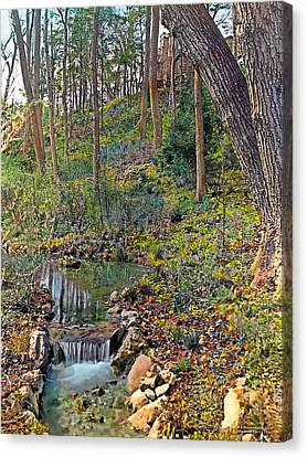 Brook Canvas Print by Terry Reynoldson