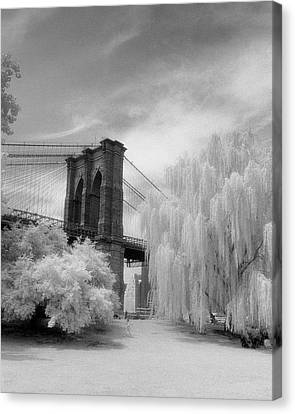 Canvas Print featuring the photograph Brooklyn Bridge Willows by Dave Beckerman