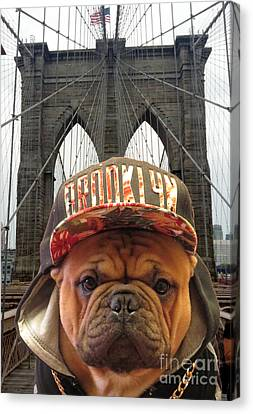 Brooklyn Dog Canvas Print