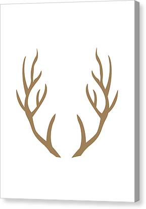 Brown Antlers Canvas Print