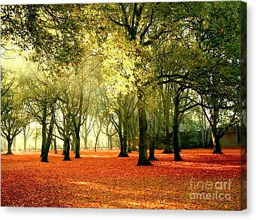 Canvas Print featuring the photograph Brown Colors by Boon Mee