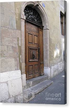 Canvas Print featuring the photograph Brown Door by Arlene Carmel