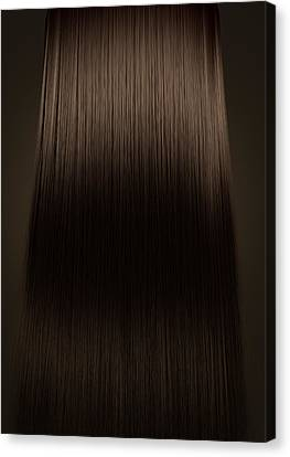Hairstyle Canvas Print - Brown Hair Perfect Straight by Allan Swart
