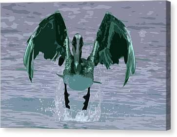 Brown Pelican Canvas Print by Carol McCarty