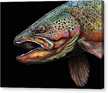 Brown Trout Head Shot No. 1 Canvas Print by Brian Murphy
