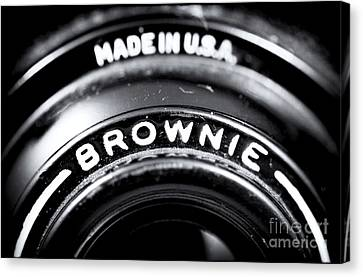 Brownie Canvas Print by John Rizzuto