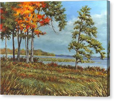 Browns Bay Canvas Print by Richard De Wolfe