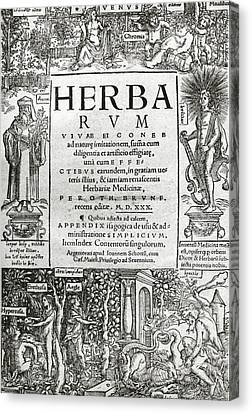 Brunfels's Herbarium (1530) Canvas Print by Science Photo Library