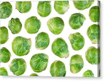 Brussels Sprouts Canvas Print by Jim Hughes
