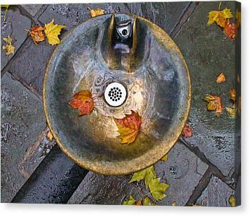 Bryant Park Fountain In Autumn Canvas Print by Gary Slawsky