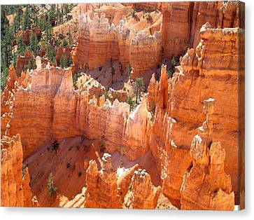 Bryce Canyon 138 Canvas Print by Maria Huntley