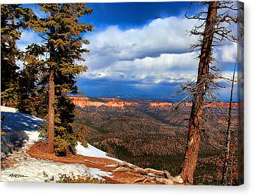 Bryce Canyon Cliff Shot 3 Canvas Print by Marti Green