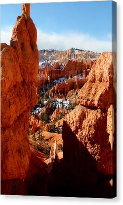 Bryce Canyon Cliff Shot Canvas Print by Marti Green
